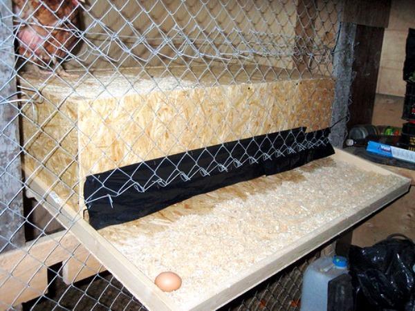 Гнезда для кур с яйцесборником