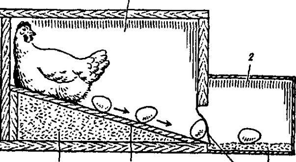 Сделать гнезда для кур