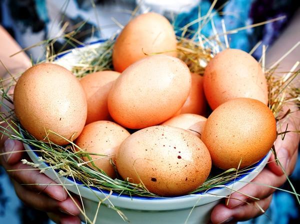 Домашние яйца от кур-несушек