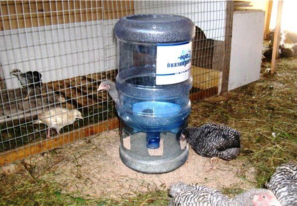 Пластиковая кормушка для птицы