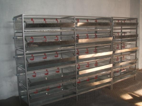 Оборудование для содержания перепелов