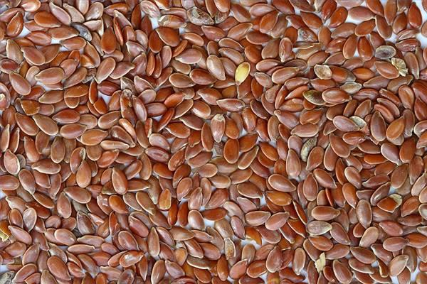 Семена льна для кормления голубей