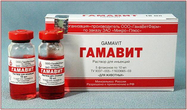 Гамавит - используется для лечения вертячки