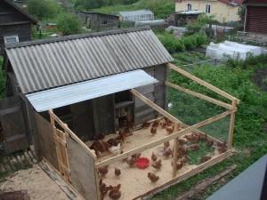 Фото курятника с двором для выгула