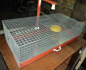 Фото клетки для цыплят