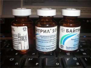 Препарат Байтрил для лечения колибактериоза
