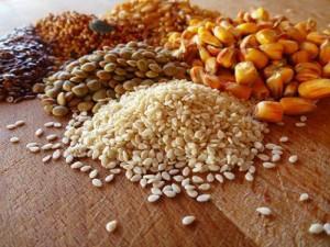Корм можно приготовить, смешав пшеницу, кукурузу, ячмень, мясокостную муку, шрот подсолнуха, кормовые дрожжи и травяную муку