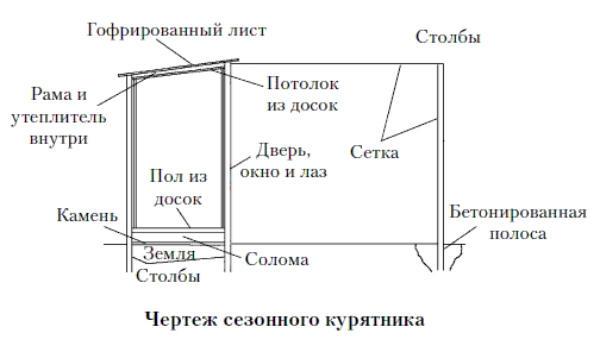 Как спланировать строительство домика для двадцати кур