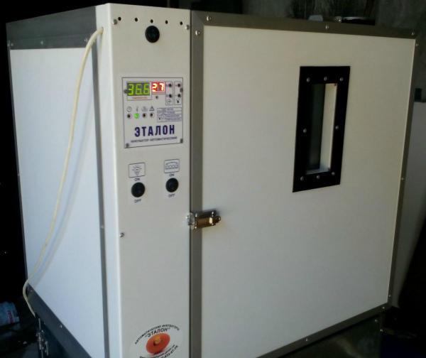 Инкубатор автомат Эталон 200
