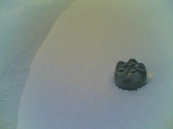 Укрытый снегом капкан для куропатки из бутылки
