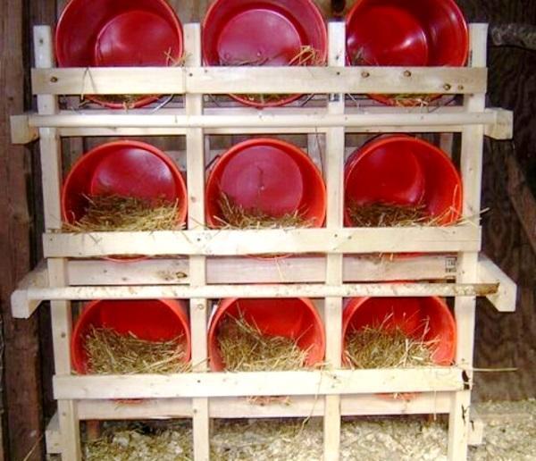 Обустроенные гнезда для кур-несушек