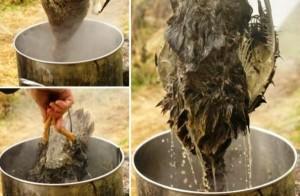 Горячий метод ощипывания птицы