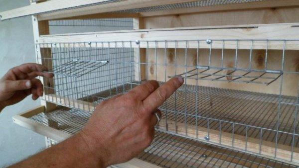 Самодельный инкубатор для пернатых