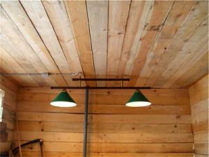 Фото двойной лампы в курятнике