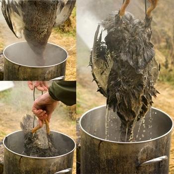 как правильно убить гуся