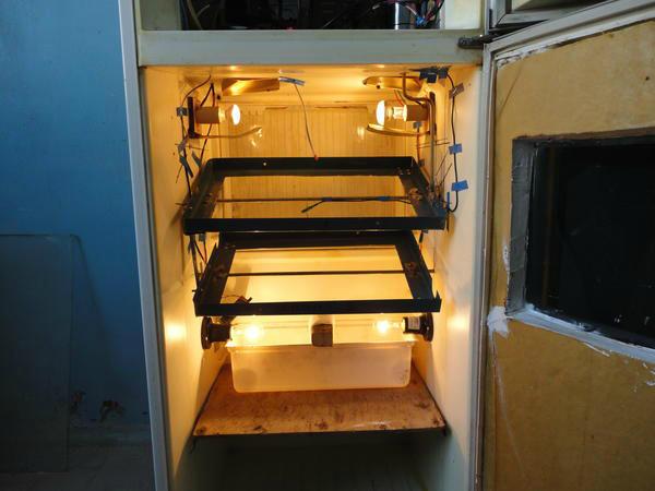 Инкубатор автомат, сделанный своими руками
