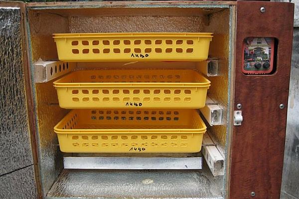 Инкубатор, сделанный из фанеры