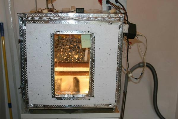Инкубатор для вывода перепелов в работе