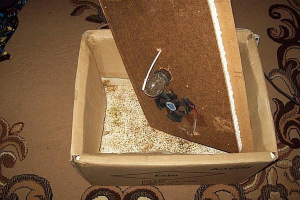 Простой инкубатор из коробки