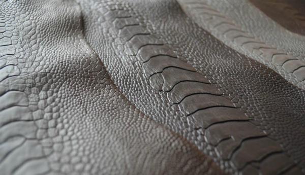 Ценная кожа страуса с грудной и спинной области